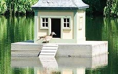 Duckhouse_1419964c