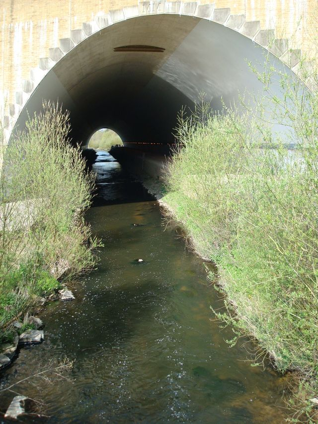 Under The Runway